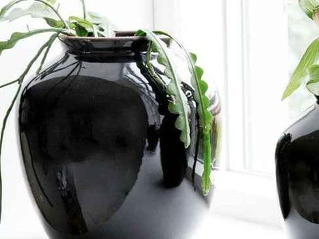 Black Shine Vase