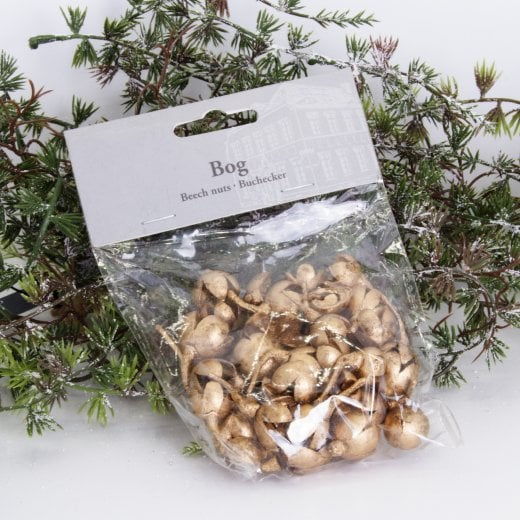Danish Collection Decorative Beech Nuts - One Bag