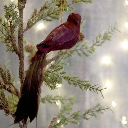 Danish Collection Feather Longtail Bird - Burgundy