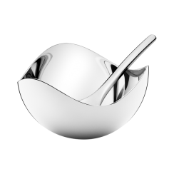Georg Jensen Stainless Steel Mirrored Salt Cellar and Spoon
