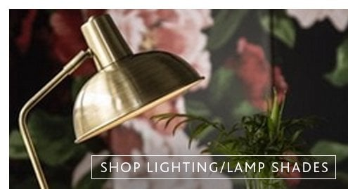 Shop lighting and furniture
