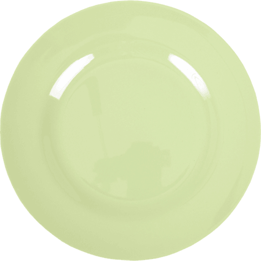 Rice Melamine Round Dinner Plate Coloured in Mint