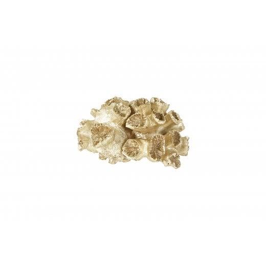 Speedtsberg Small Champagne Coral