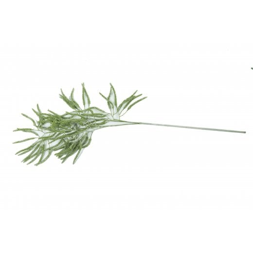 Speedtsberg Spray Catkin Branch
