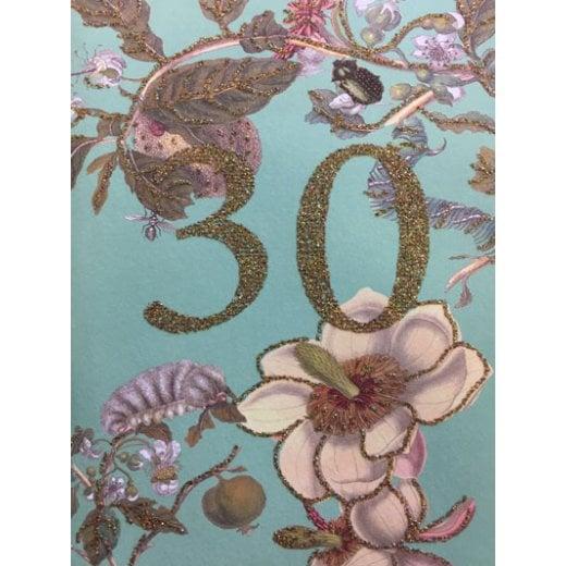 Vanilla Fly Birthday Card 30 Years Old