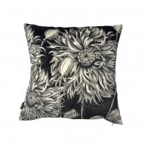 Vanilla Fly Black Poppy Cushion