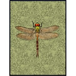 Vanilla Fly Dragonfly Poster - Green