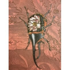 Vanilla Fly Greeting Card with Gold Mica