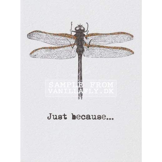 Vanilla Fly Just Because Greeting Card