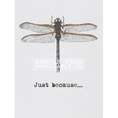 Vanilla Fly Just Because Greeting Card