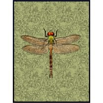 Vanilla Fly Large Dragonfly Poster - Green