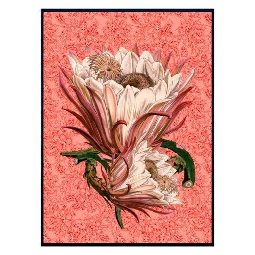 Vanilla Fly Large Paisley Poster 70x100 - Rose