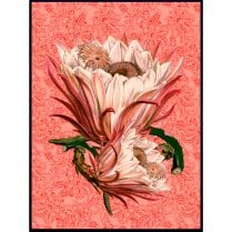 Vanilla Fly Large Paisley Poster - Rose