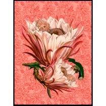 Vanilla Fly Paisley Poster - Rose
