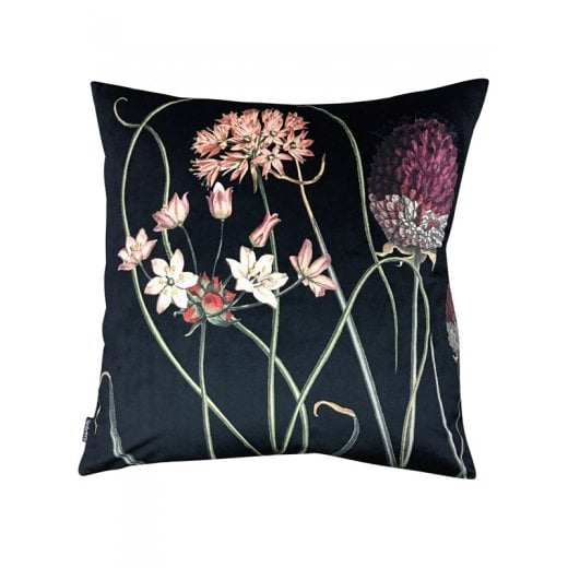 Vanilla Fly Velvet Cushion - Allium Black