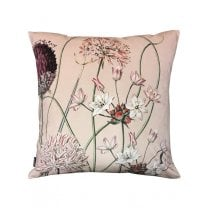 Vanilla Fly Velvet Cushion - Allium Pink