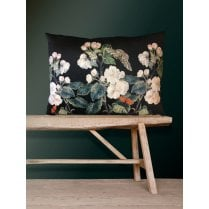 Vanilla Fly Velvet Cushion - Black Appleblossom 50x70cm (Including Deluxe Filling)