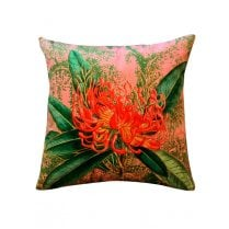 Vanilla Fly Velvet Cushion - Coral Nutans