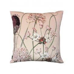 Vanilla Fly Velvet Cushion Cover - Allium Pink