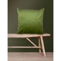 Vanilla Fly Velvet Cushion-Moss 50 x 50cm(Including Deluxe Filling)