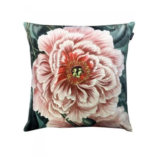 Vanilla Fly Velvet Cushion - Peony Print