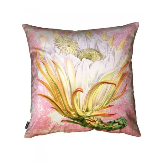 Vanilla Fly Velvet Cushion - Protea Pink