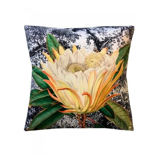 Vanilla Fly Velvet Cushion - Yellow Protea