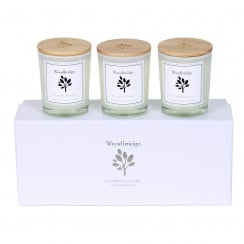 Woodbridge Set Of 3 Orange Blossom Soy Candles